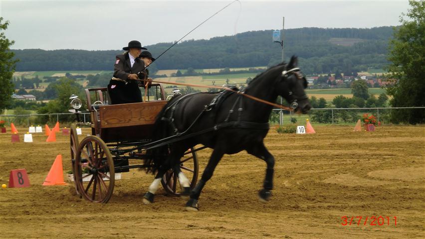 fahrturnier-2011-109-klein