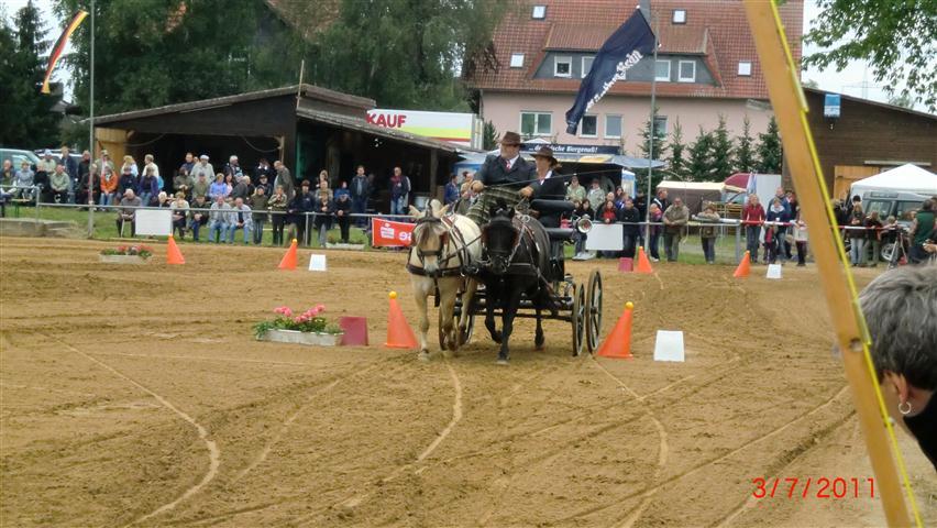 fahrturnier-2011-147-klein