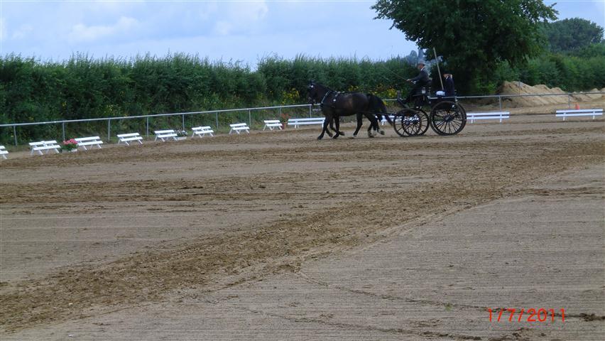 fahrturnier-2011-17-klein