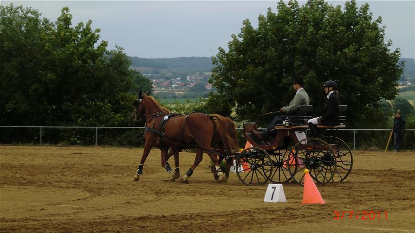 fahrturnier-2011-184-klein
