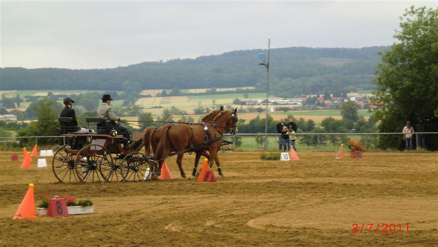 fahrturnier-2011-187-klein