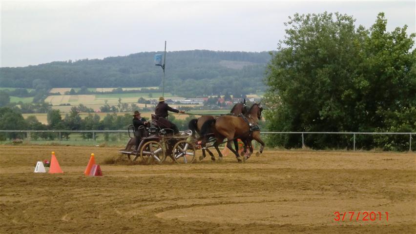 fahrturnier-2011-207-klein