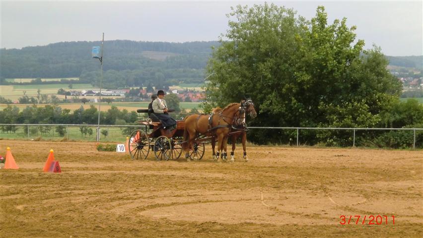 fahrturnier-2011-230-klein
