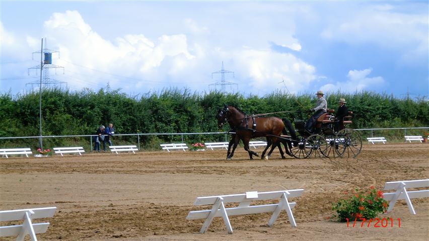 fahrturnier-2011-25-klein