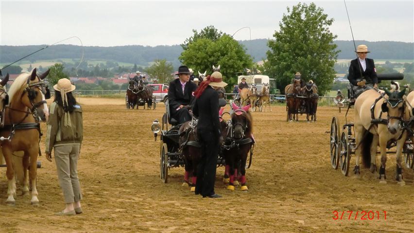fahrturnier-2011-254-klein