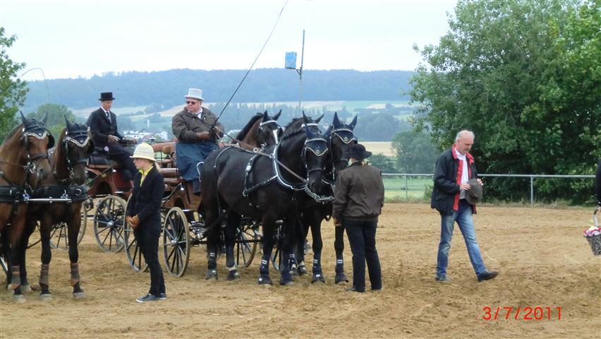 fahrturnier-2011-257-klein