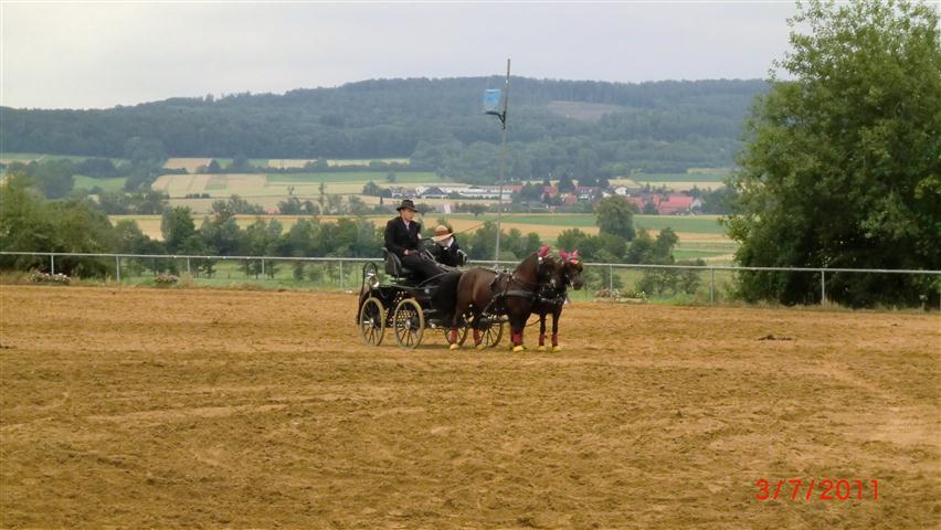 fahrturnier-2011-272-klein