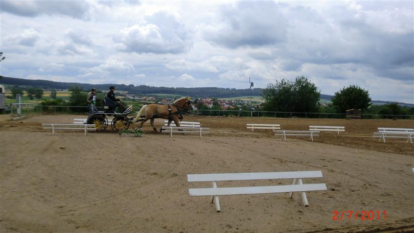 fahrturnier-2011-62-klein