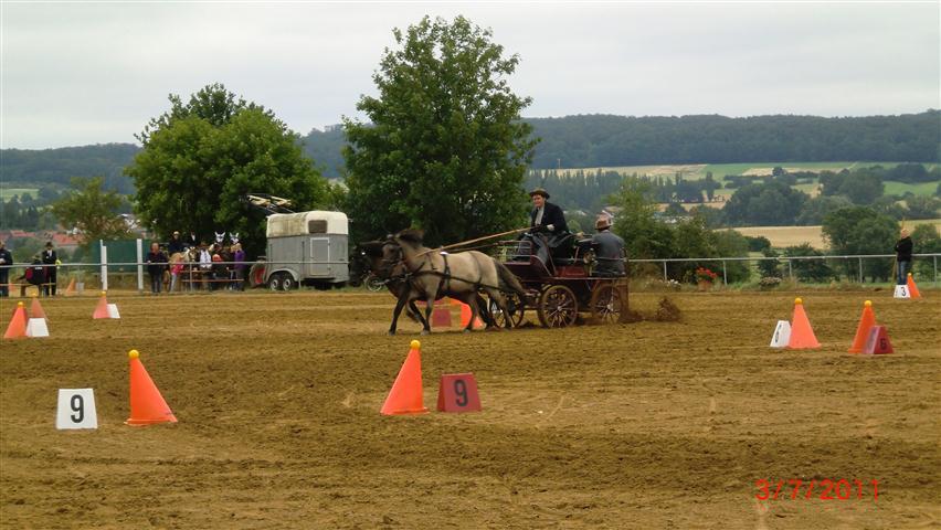 fahrturnier-2011-94-klein