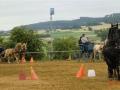 fahrturnier-2011-104-klein