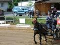 fahrturnier-2011-11-klein