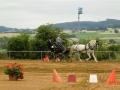fahrturnier-2011-110-klein