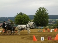 fahrturnier-2011-113-klein