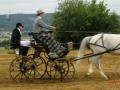 fahrturnier-2011-115-klein