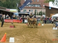 fahrturnier-2011-157-klein