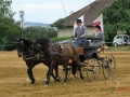 fahrturnier-2011-159-klein