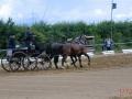fahrturnier-2011-16-klein