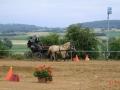 fahrturnier-2011-234-klein