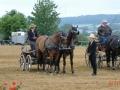 fahrturnier-2011-258-klein