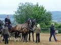 fahrturnier-2011-259-klein