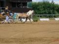 fahrturnier-2011-28-klein
