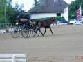 fahrturnier-2011-4-klein