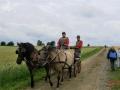 fahrturnier-2011-57-klein