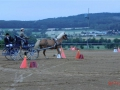 fahrturnier-2011-74-klein