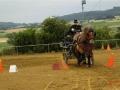 fahrturnier-2011-83-klein