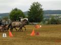 fahrturnier-2011-95-klein